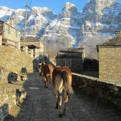 horse riding in Zagori, Greece