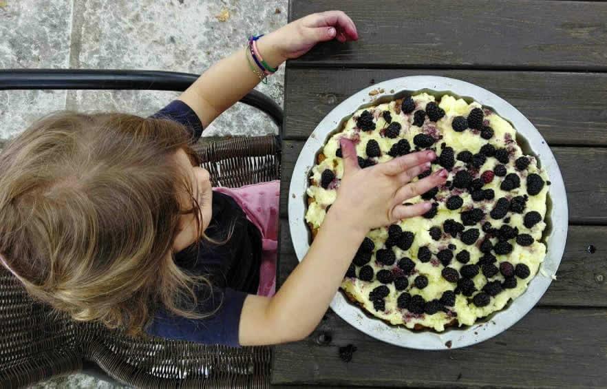 Παρασκευή τάρτας βατόμουρου | Ξενώνας Εν Χωρα Βεζίτσα, Βίτσα, Ζαγοροχώρια