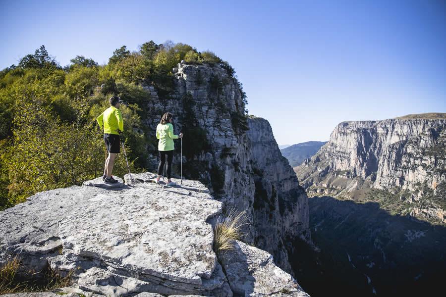 Ο Εθνικός Δρυμός Βίκου – Αώου ιδρύθηκε το 1973 (ΠΔ 213/20.8.1973) με σκοπό την προστασία της πλούσιας άγριας φύσης που απλώνεται από το φαράγγι του Βίκου μέχρι τη χαράδρα του κυρίως ποταμού Αώου και την ενδιάμεση ορεινή περιοχή του βουνού Τύμφη.